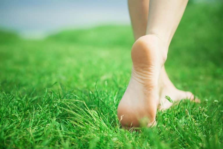Woman legs on green grass